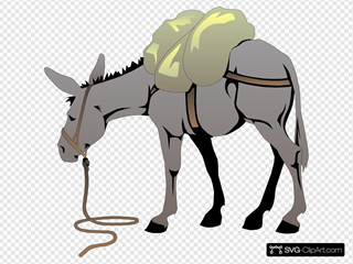 Donkey With A Load