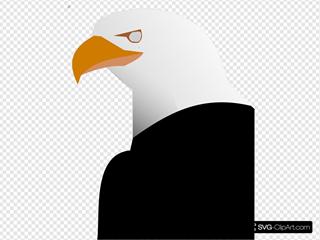 Eagle 25