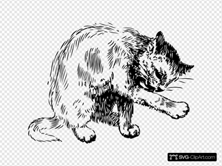 Cat Washing Itself Clipart