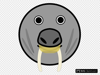 Seal Animal Rounded Face