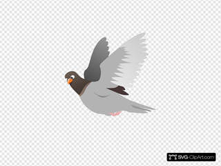 A Flying Pigeon