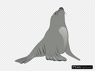 Valessiobrito Sea Lion
