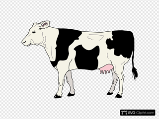 Side View Of A Cow