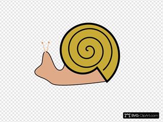 Snail 15