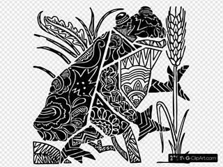 Ornate Frog