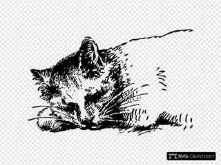 Sleeping Cat 4 Clipart