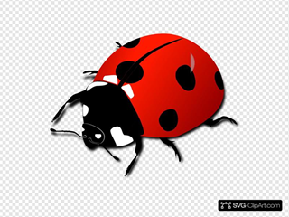 Red Lady Bug SVG Clipart