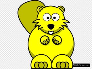Yellow Beaver