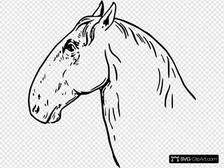 Ram-headed Horsehead