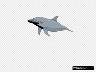 Dolphin 2 SVG Clipart