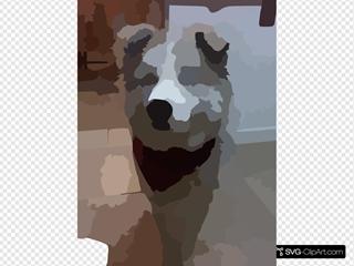 Blurred Pet Photo