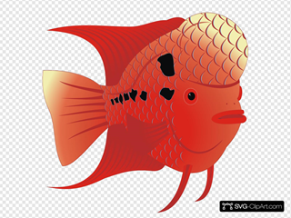 Flowerhorn Fish SVG icons