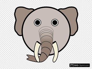 Elephant With Rounded Face
