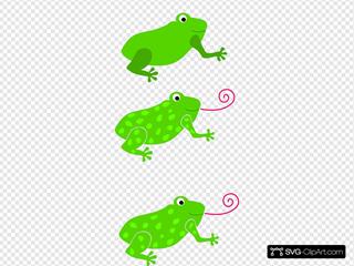 Frog Granota Grenouille