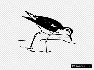 Yellow Leg Bird Clipart