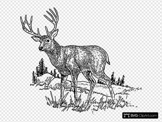 Deer SVG icons