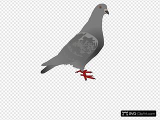 Kamil St  Pi  Ski SVG Clipart