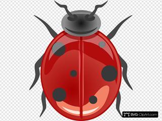 Shiny Ladybug