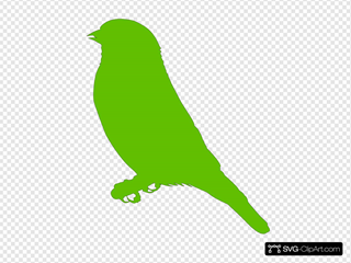 Lighter Green Bird