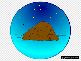 Bear Sleeping Under The Stars