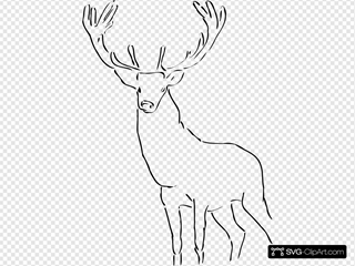 Stag Outline