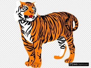 Tigre04