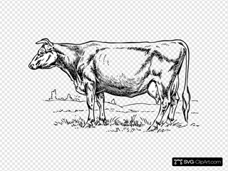 Cow 3 Clipart