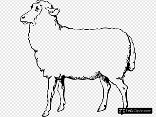 Sheep SVG Clipart