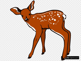 Fawn SVG Cliparts
