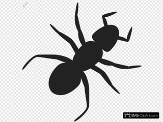 Ant SVG icons
