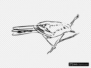 Bird Standing On A Branch