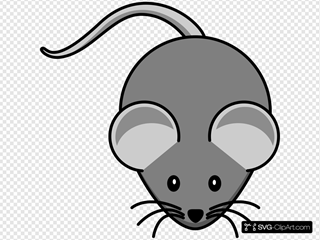 Simple Mouse Dark Grey