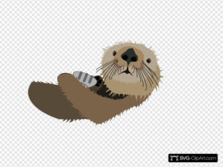 Otter With Shell