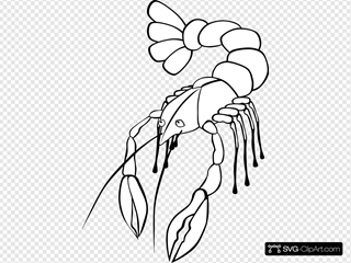Crawfish 4