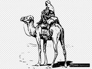 Person Riding Camel
