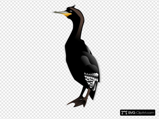 Cormorant Md SVG Clipart