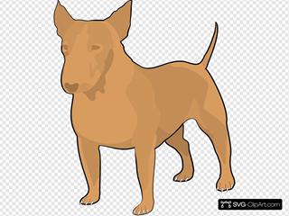 Brown Bull Terrier