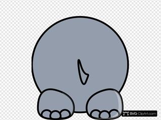 Hippo Back