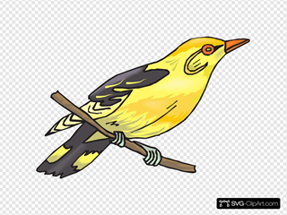 Perched Yellow Finch
