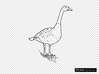 Canada Goose SVG Clipart