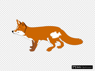 Orange Fox Side View