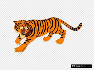 Tigre03
