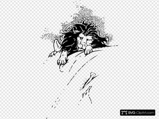 Lion And Bone