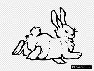 Happy Hopping Rabbit