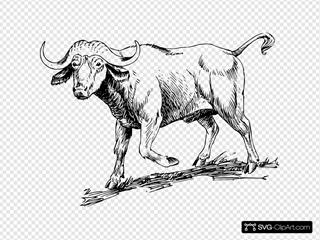 Walking Buffalo Drawing