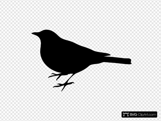 Bird Silhouette Small Black