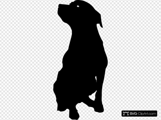 Rottweiler Silhouette With Eyes