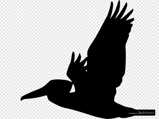 Flying Pelican Silhouette
