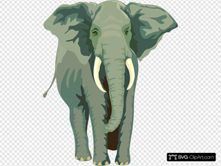 Elephant 4 SVG icons