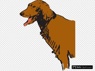 Furry Panting Dog